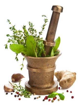 Herbalism Program