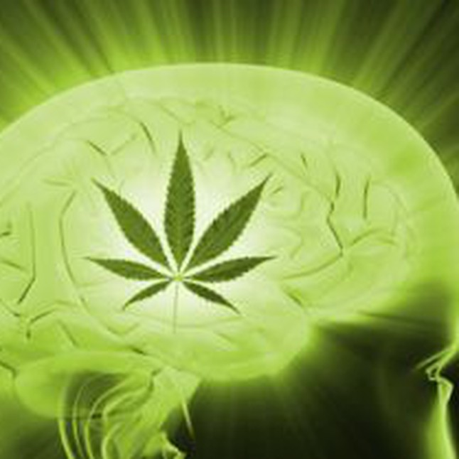 The Science of Medical Cannabis Class – March 3rd